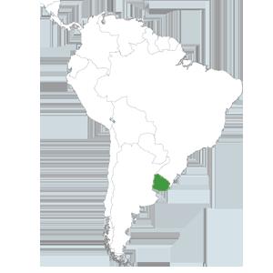 Ong remar en uruguay